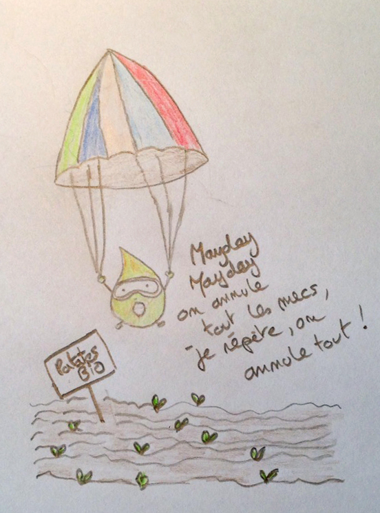 graine parachute